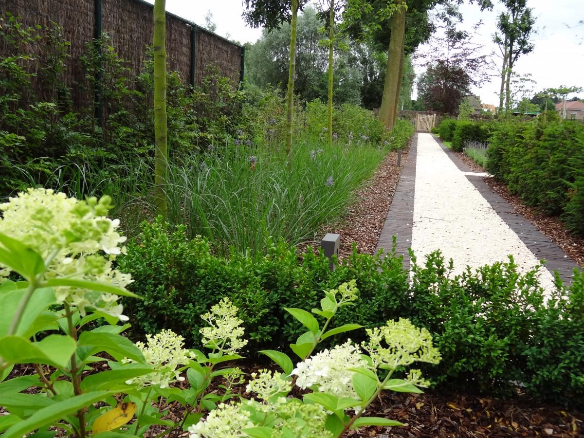 Uw tuin laten aanleggen vertrouw op groendesign regio for Vijver laten aanleggen